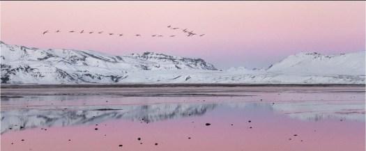 Winter-Sunset-IreneStupples