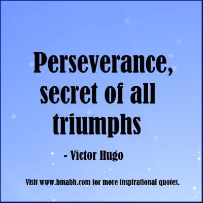 motivational quotes perseverance-Perseverance, secret of all triumphs