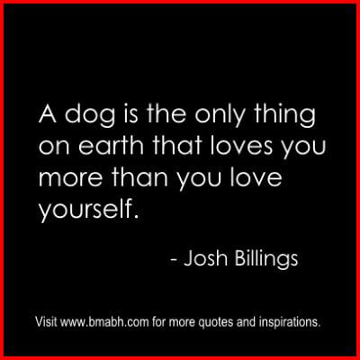 Love Yourself Quotes And Sayings on www.bmabh.com #unconditional love