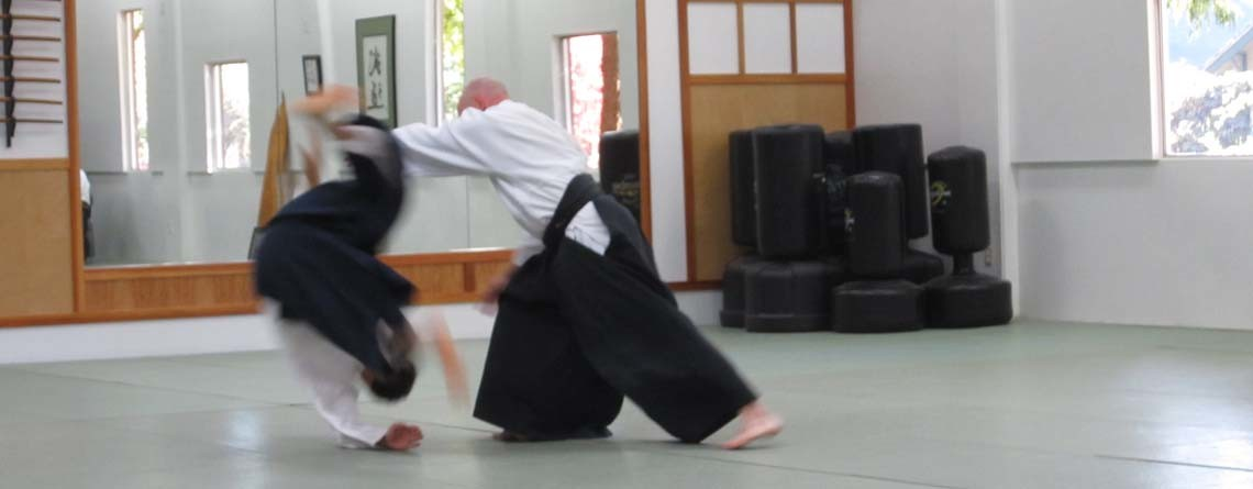 Aikido Lessons in Eugene
