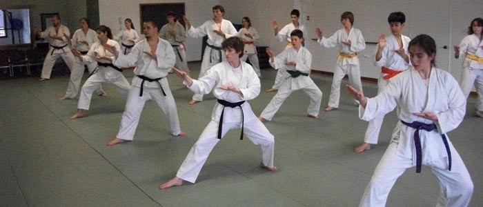 group karate knifehand block