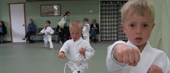 kinder karate punch