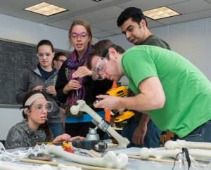 "Jill Higginson, BMEG 310 where students are performing ""tests"" on leg bones."