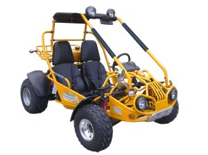 Trailmaster 150 XRX | 150XRX | BMI Karts And Parts