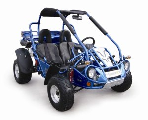 Hammerhead OffRoad Inc SS 250  DISCONTINUED | Hammerhead SS250 | BMI Karts and Motorocycle Parts