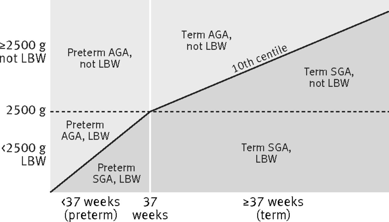 Estimates of burden and consequences of infants born small