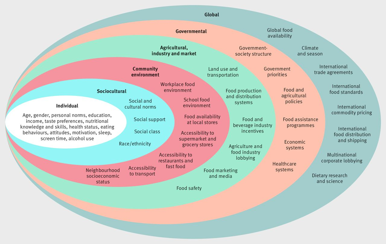 Role of government policy in nutritionbarriers to and opportunities for healthier eating  The BMJ