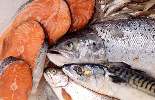 Image result for omega fatty fish