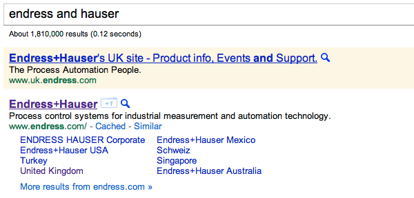 Endress+Hauser in Google with AdWords ad