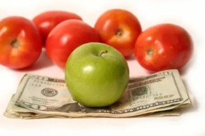 budget / argent / paléo