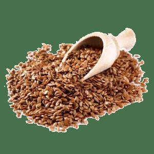 graine de llin paléo