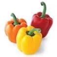 Légumes Paleo
