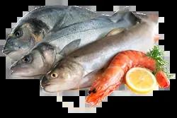 Régime alimentaire de la NASH, les poissons à privilégier