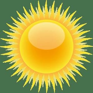 PERTE DE CHEVEUX : 6 compléments alimentaires efficaces 5