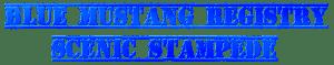 BMR Scenic Stampede Logo