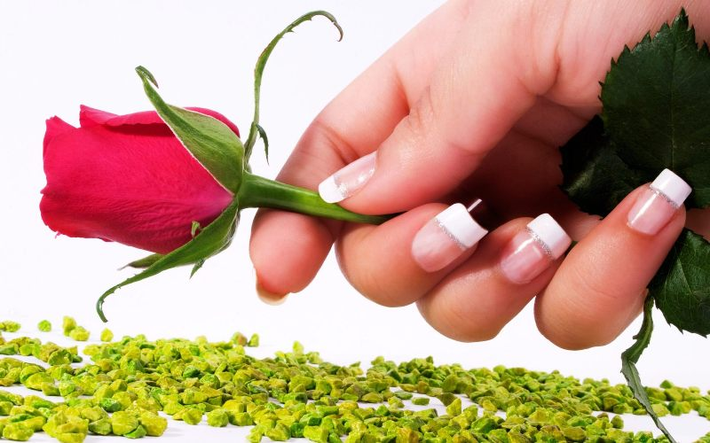 Happy Red Rose Day 2014 Greetings, Wishes, Images, HD ...