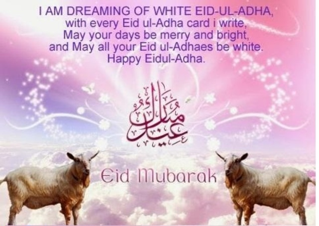 25 Amazing Bakra Eid Eid Ul Adha Images Wallpapers Pictures Free