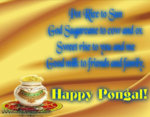 Happy pongal greetings 2015 to wish your loved ones bms happy pongal wallpapers 10 m4hsunfo