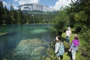 Lake cresta