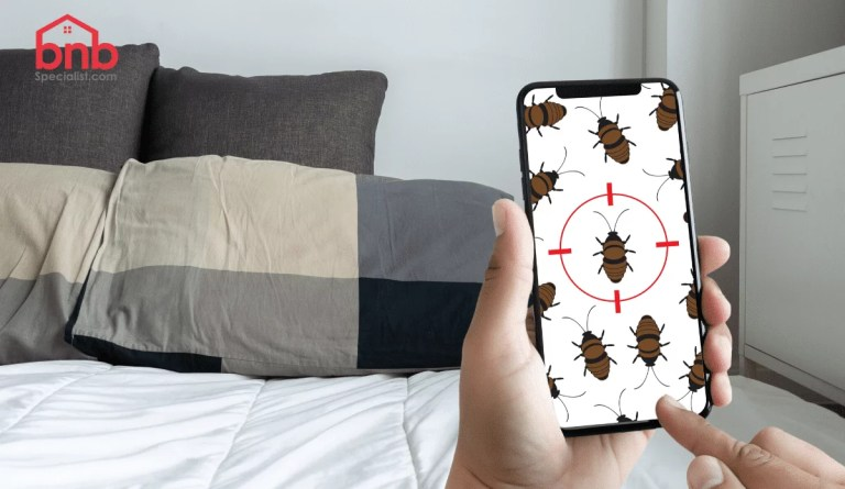 airbnb bed bugs problem