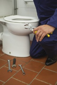 The Many Benefits of a Professional Toilet Replacement