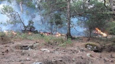 حريق القبيات الهرمل ما زال مستعرا وعمليات الاطفاء مستمرة