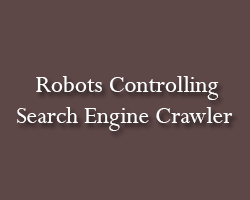 Robots Search Engine Crawler Control.