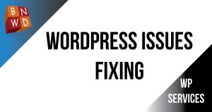 Fixing wordpress issues