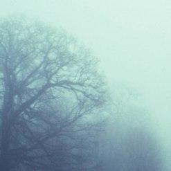 soendermark-fog1