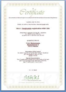 ZertifikatEnglisch