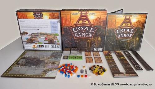 Coal_Baron-Prezentarea_detaliata_a_componentelor_display