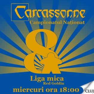 carcassonne cluj miercuri 2014