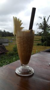 Sari Organik Ubud Bali