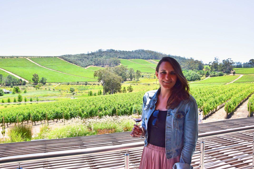 glen ellen wine tasting