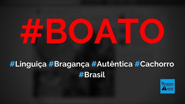 Linguiça da marca Autêntica de Bragança é feita com carne de cachorro, diz boato (Foto: Reprodução/Facebook)