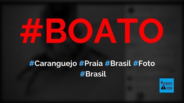 Caranguejo gigante é encontrado em praia do Brasil e está atacando banhistas, diz boato (Foto: Reprodução/Facebook)