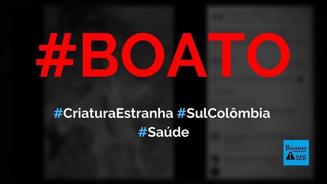 Criatura estranha nunca vista antes foi encontrada no sul da Colômbia, diz boato (Foto: Reprodução/Facebook)