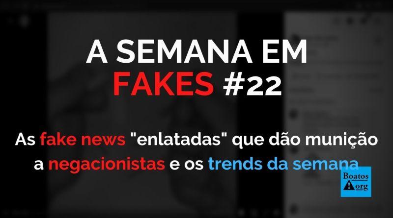"""Fake news """"enlatadas"""" reforçam munição de negacionistas no Brasil"""