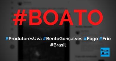 Em Bento Gonçalves (RS), produtores colocam fogo em tonéis para não congelar uvas, diz boato (Foto: Reprodução/Twitter)
