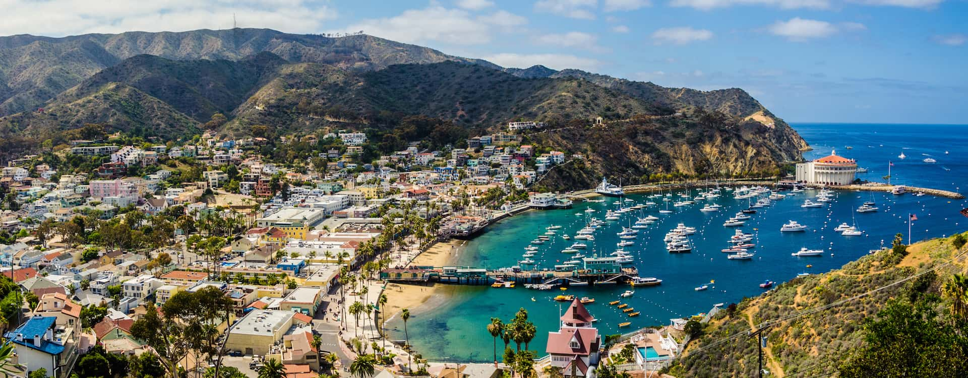 Catalina Island Day Trips