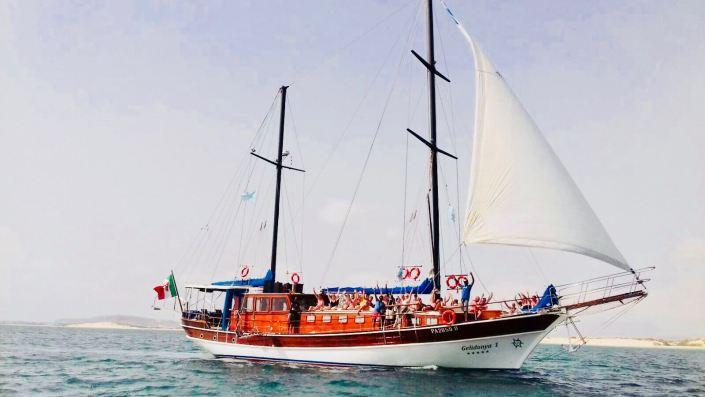 Gelidonya Boat Parties in Sal Rei - Boavista - Cape Verde