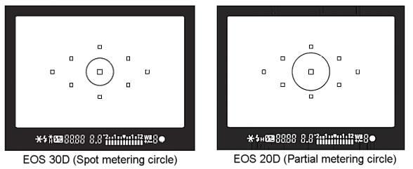 Canon EOS 30D Review
