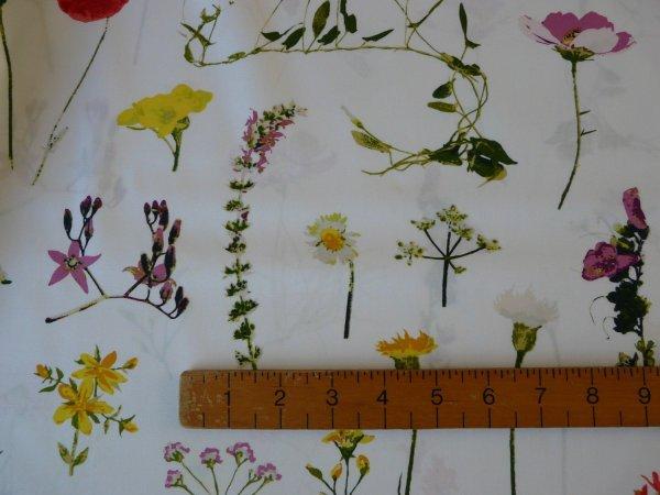 Lavish Petal Picking Dainty-cotton Fabric -1fq Bobbins & Buttons