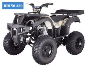 TAO TAO 200cc Full Size Utility ATV Air Cooled Manual 4