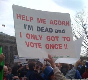 acorn_vote_once.jpg