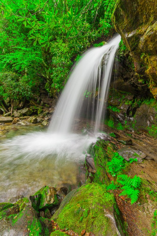 Grotto Falls, Great Smoky Mountains National Park, TennesseeCanon 5D Mk II, 1 sec, f/22