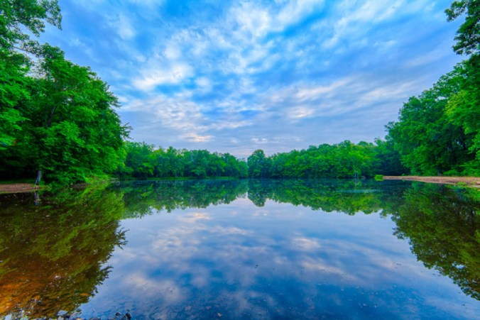 10161. Teal Pond, Dagmar Wildlife Management Area, Arkansas