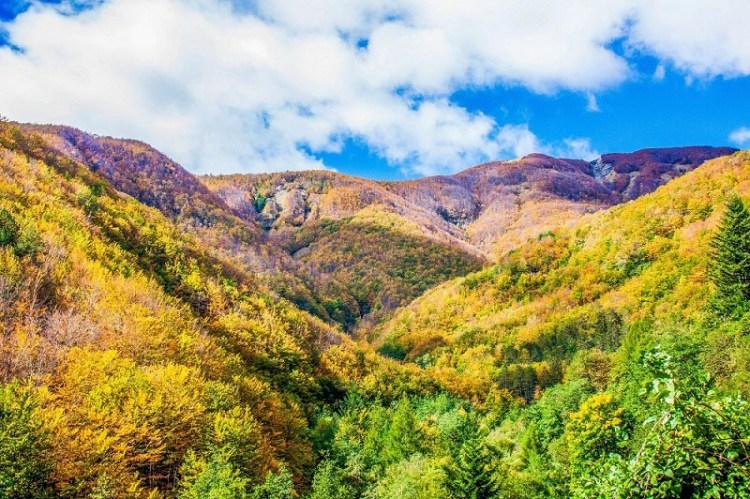 valle-orsigna autunno