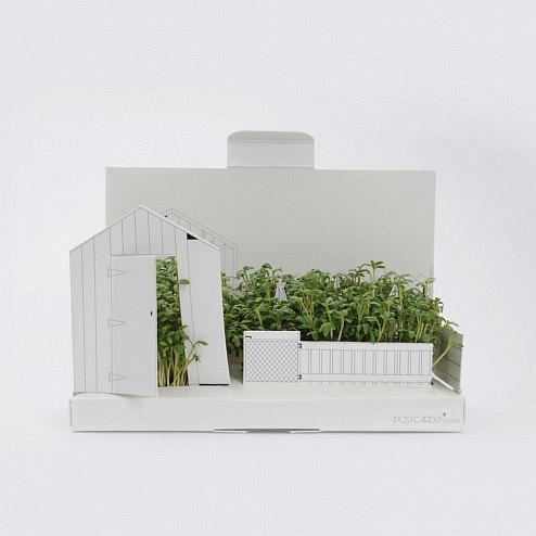 postgarden-growing-kits-easy-to-post-made-in-uk