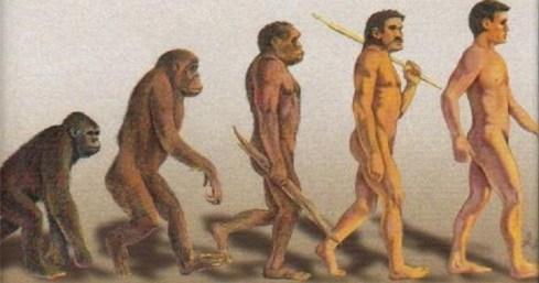 evolutia-omului